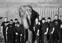 Sto zvířat se svou Elephantour 2018 v...