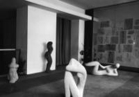 Elegie moderny. Knižní kultura let 1958–1968