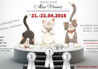 XV. a XVI. mezinárodní výstava koček z celé Evropy v Brně