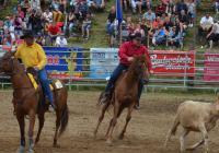 Rodeo show - Šikland Zvole nad Pernštejnem