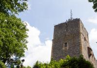 Hrad Radyně, Starý Plzenec