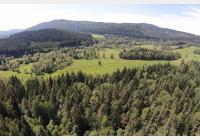 Vimperskou Zlatou stezkou z Kubovy Hutě do Horní Vltavice