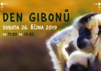 Den gibonů v Zoo Jihlava
