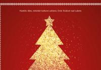 Rozsvícení vánočního stromu - Dvůr Králové nad Labem