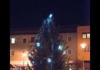 Rozsvícení vánočního stromu - Miroslav