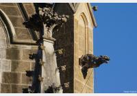 Třeboň – za kostely a kaplemi