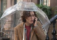 Deštivý den v New Yorku / repete