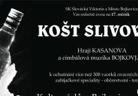 Košt slivovice - Bojkovice