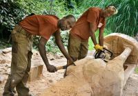 Afričtí řezbáři v Zoo Zlín