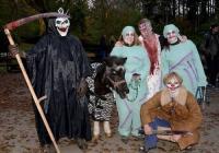 Večer duchů v Zoo Olomouc