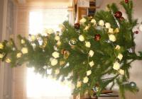 Rozsvícení vánočního stromu - Vracov