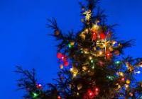 Rozsvícení vánočního stromu - Ostrava Hrabová