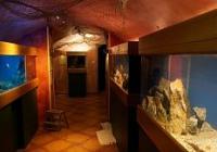 Akvárium Třeboň