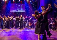 Reprezentační ples města Písek