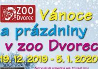 Vánoce v Zoo Dvorec - Borovany