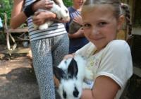 Tábor v Zoo Děčín