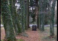 Židovský hřbitov Třeboň, Třeboň