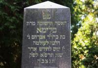 Židovský hřbitov, Opava