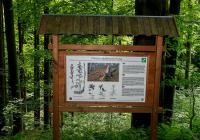 Přírodní rezervace Holina - Current programme