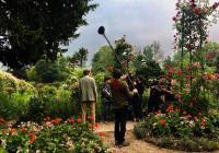 Umění v kině: Monetovy lekníny - magie vody a světla