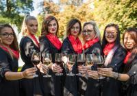 Plzeňský festival vína 2019 - jaro