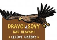 Pravidelné letové ukázky sov a dravců - Zoo Jihlava