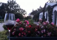 Zámecké vinobraní - Raduň