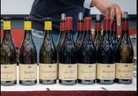 Galadegustace italských vín 2019