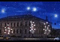 Rozsvícení vánočního stromu - Vyškov