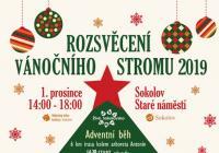 Rozsvícení vánočního stromu - Sokolov