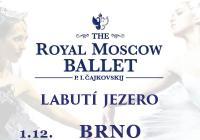 Royal Moscow Ballet: Labutí jezero - Brno
