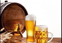 Pivní slavnosti - Zimní stadion Blatná