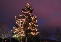 Rozsvícení vánočního stromu -  Přehrada Mšeno Jablonec nad Nisou