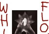 Szaweł Płóciennik / White flower