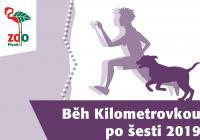 Běh Kilometrovkou - Plzeň