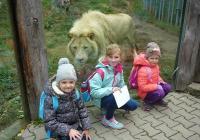 Den zvířat v Zoo Hodonín