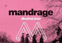 Mandrage - České Budějovice