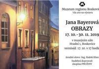 Jana Bayerová / Obrazy