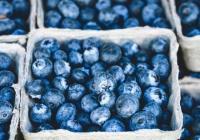 Farmářské a řemeslné trhy Puritas 2019 v Bruntále