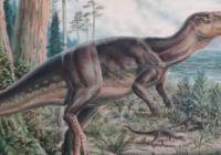 Obrazy z prehistorické země