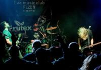 Koncert Cox&Vox, Anteater a What`s In The Box