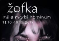 Iveta Polcarová / Žofka ... Mille Morbi Homini