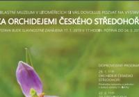 Za orchidejemi Českého středohoří