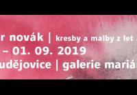 Vladimír Novák / Kresby a malby z let 2017–2019