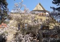 Dny evropského dědictví - Zahrada Brabcovy vily