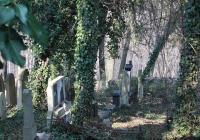 Starý židovský hřbitov na Smíchově, Praha 5