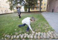 Miroslav Brooš / Darovanie... zeme!!!