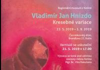 Vladimír Jan Hnízdo / Kresebné variace