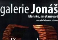 Libor Bartoš / Dřevo a kov