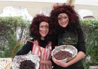 Svatomartinské čokoládobraní - Hrad a zámek Staré Hrady